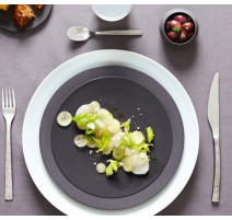 Assiette plate Terra, Guy Degrenne