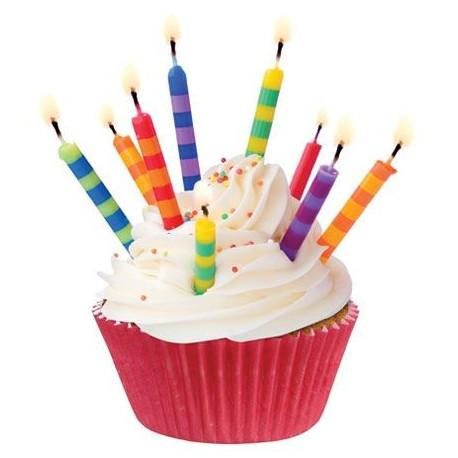 Moules à cupcakes (x45)
