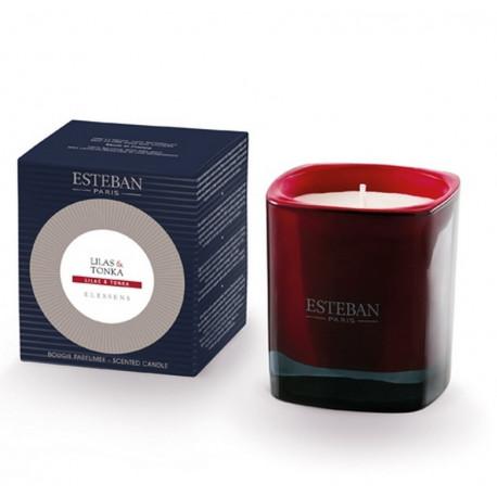Bougie parfumée Elessens collection Lilas/Tonkas, Esteban