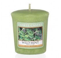 Votive Menthe Sauvage, Yankee Candle