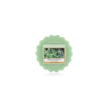 Tartelette Menthe Sauvage, Yankee Candle