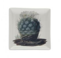 Vide poche Cactus, Cubic