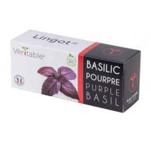Lingot® basilic pourpre BIO, Véritable