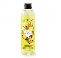Recharge pour bouquet parfumé Terre d'agrumes, Esteban
