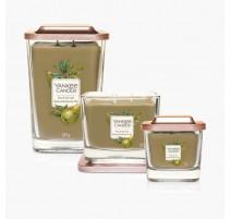 Jarre Elevation Poire et feuilles de thé, Yankee Candle