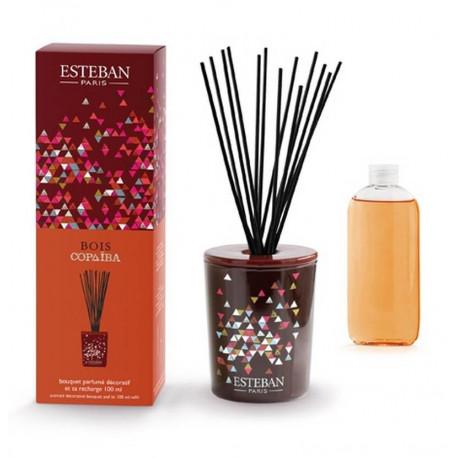 Coffret bouquet parfumé décoratif Bois Copaïba, Esteban