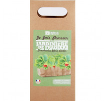 Jardinière en tissu de fraisiers bio, Radis et capucine