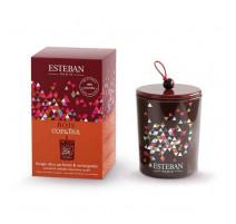 Bougie deco parfumée rechargeable Bois Copaïba, Esteban
