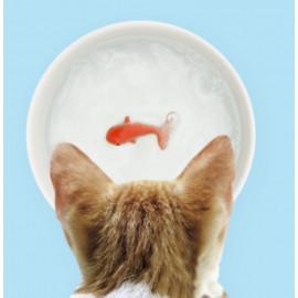 Bol en céramique avec poisson rouge 3D, Suckuk