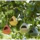 Mangeoir oiseau vert Point virgule