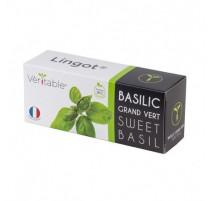 Lingot® basilic grand vert BIO, Véritable