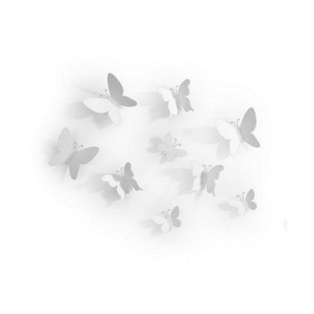 Papillon mural blanc, Umbra