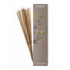 Encens Indiens Esprit de thé, Esteban